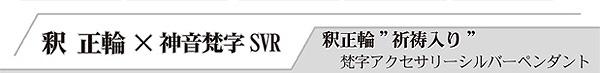 弥勒菩薩 弁財天 梵字アクセサリー シルバーペンダント 釈正輪先生の祈祷入り 究極のお守りペンダント